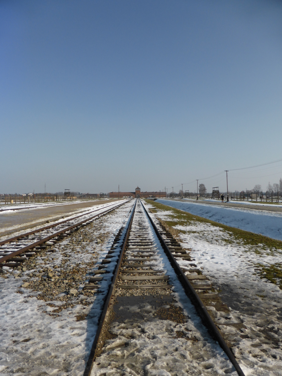 Walking Tour of Auschwitz