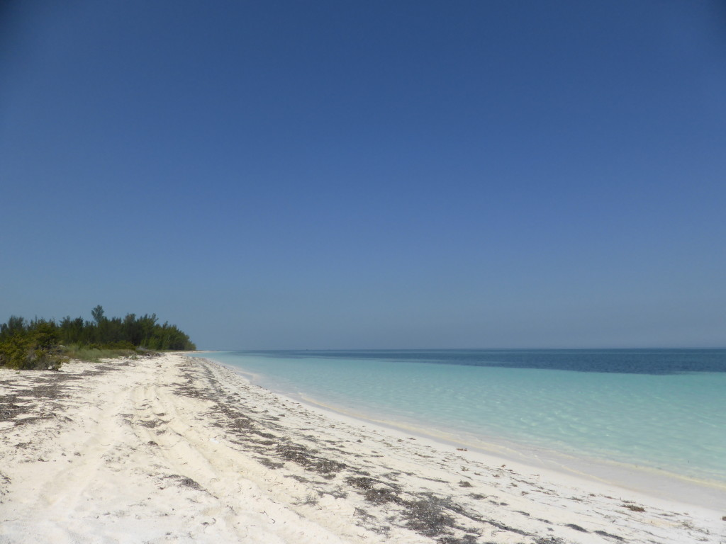 Beach on Cayo Levisa