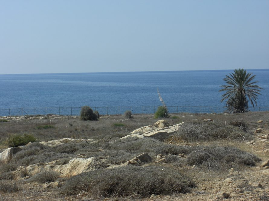 The west coast of Cyprus