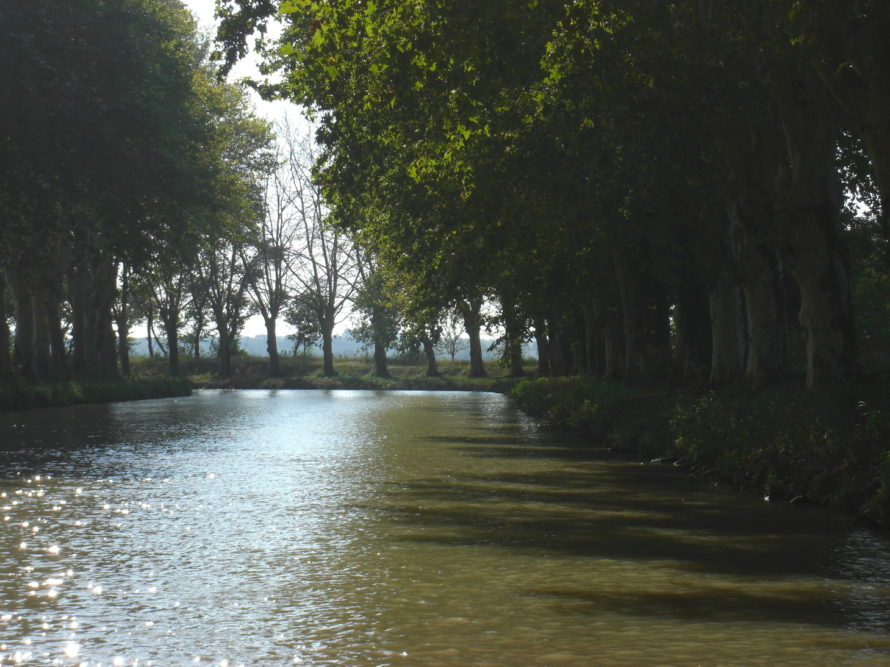 Canal du Midi boat trip