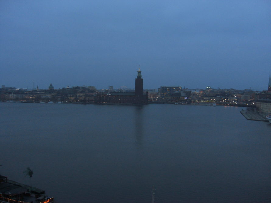 View from Sodermalm at night